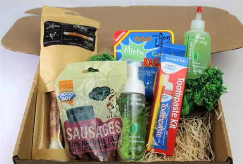 Hamper box cotaining everything to care for your dogs teeth and gums.