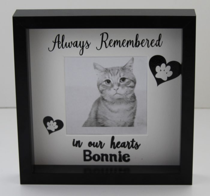Remember our pet frame.