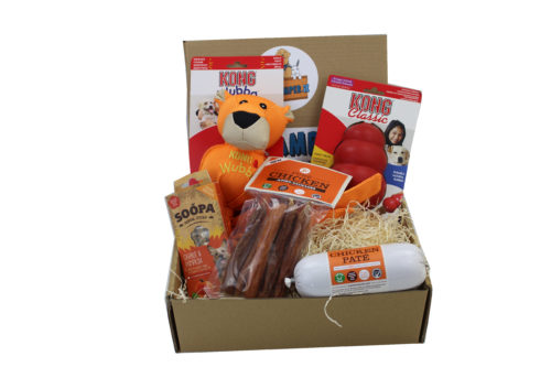 Hamper with a Classic Kong
